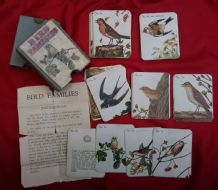 Antique Collectible cards game Bird Families circa 1910,